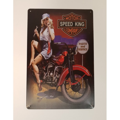 PLAQUE METAL 20X30 MOTO PIN UP REPARATION