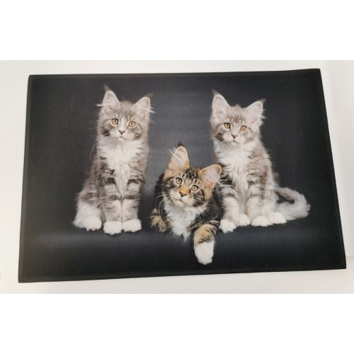 TAPIS SOL ANTIDERAPANT TROIS CHATONS 50 X 75 CM